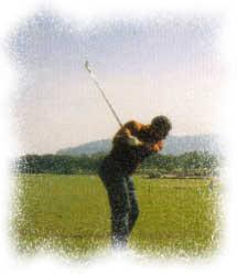 Todoasturias la gu a de asturias en internet golf for Piscinas la morgal